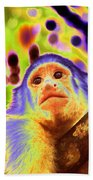 Solarized White-faced Monkey Beach Towel
