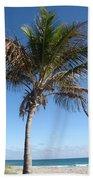 Sole Palm Beach Towel