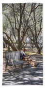 Solitaire Reading Beach Towel