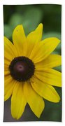 Solo Black-eye Susan Beach Towel