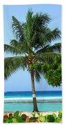 Solo Palm Beach Towel