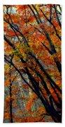 Song Of Autumn Beach Towel