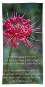 Song Of Solomon - The Flowers Appear Beach Towel