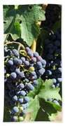 Sonoma Vineyards In The Sonoma California Wine Country 5d24630 Vertical Beach Sheet