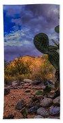 Sonoran Desert 54 Beach Towel