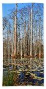 South Carolina Swamps Beach Towel