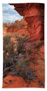 South Coyote Buttes Grand View Beach Towel by Inge Johnsson