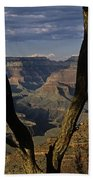 South Rim Grand Canyon Sunset Light On Rock Formations With Woma Beach Towel