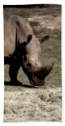 Southern Black Rhino Beach Towel