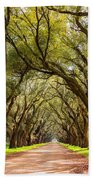 Southern Journey Paint Beach Towel