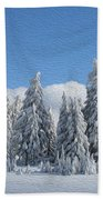 Southern Oregon Forest In Winter Beach Towel