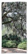 Southern Trees Beach Towel