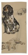 Spaniel, Pekinese And Chow, 1930 Beach Towel