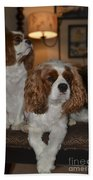 Spaniels Beach Towel