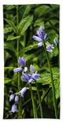 Spanish Bluebells Beach Towel