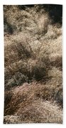 Sparkling Grasses Beach Towel