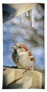 Sparrow 5   Beach Towel
