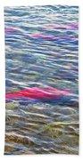 Spawning Salmon In Moraine River In Katmai National Preserve-ak Beach Towel