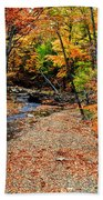 Spectrum Of Color Beach Towel by Frozen in Time Fine Art Photography