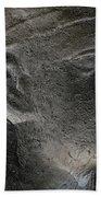 Sphinx Statue Head Grey Usa Beach Towel
