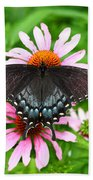 Spicebush Swallowtail Butterfly Beach Sheet
