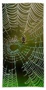 Spider In Web 3 Beach Towel