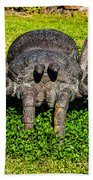 Spider Sculpture Beach Towel