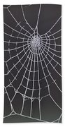 Spider Web With Frost Beach Towel
