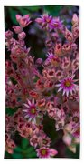 Spiky Flowers Beach Towel