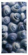 Spirals Blue Beach Towel