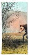 Spiritus Equus Beach Towel