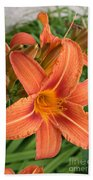 Splendid Day Lily Beach Towel
