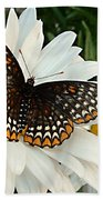 Spotted Butterfly Beach Towel