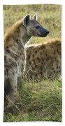 Spotted Hyaena Beach Towel