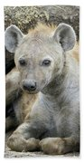Spotted Hyena Mother And Pups Beach Towel