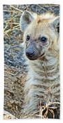 Spotted Hyena Pup In Kruger National Park-south Africa  Beach Towel