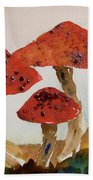 Spotted Mushrooms Beach Towel