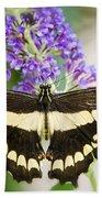 Spread Your Wings My Little Butterfly  Beach Towel