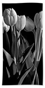 Spring Beauties Bw Beach Towel