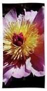 Spring Blossom 12 Beach Towel