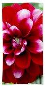 Red Spring Flower Beach Towel