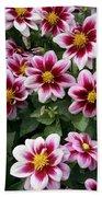 Spring Flowers 4 Beach Towel