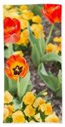 Spring Flowers No. 6 Beach Towel