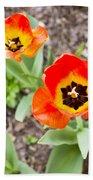Spring Flowers No. 7 Beach Towel