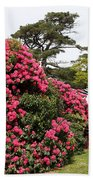 Spring In Muckross Garden - Ireland Beach Towel