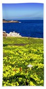 Spring In Pacific Grove Ca Beach Towel
