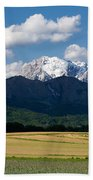 Spring In The Alps Beach Towel