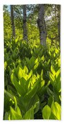 Spring In The Wasatch Beach Towel