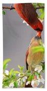 Cardinal Spring Love Beach Towel