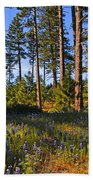 Spring Lupines In The Forest Beach Towel